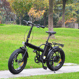 脂肪質のタイヤの電気自転車(RSEB-507)を折る500W