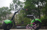 bici elettrica della rotella di Citycoco due della grande rotella 9.5inch (motorino elettrico di harley)