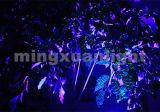 La luz láser de luz láser de color púrpura mini etapa en Venta