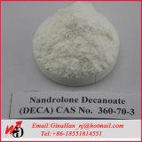 99% Oxandrolon-E基礎Anavarの肯定的なボディービルのステロイド