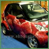 Самый лучший стикер Price Customed Vinyl Car для Decoration (TJ (11))