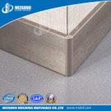 방수 쉬운 부엌에 있는 내밀린 알루미늄 둘러싸는 널을 정리한다
