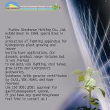 Grow T5 Luz Fluorescente Fixture 2 * 2