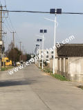Al Jaar die 6m 30W Zonne LEIDENE Straatlantaarn (dzs-06-30W) aansteken