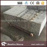 Плитка гранита Бразилии популярная каменная белая Rose для пола и стены