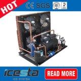 De Compressor van de Diepvriezer van Copeland van de Koude Opslag van de Diepvriezer van de aardbei