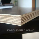 Shandong Very Cheap High Quality 또는 Film Faced Plywood/Building Plywood