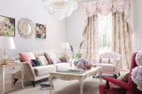 熱い販売のニースデザインホームソファー