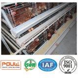 養鶏場装置および層の鶏のケージシステム