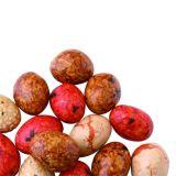 Los cacahuetes recubiertos con alta calidad