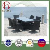 Продажи с возможностью горячей замены для отдыхающих патио с садом открытый плетеной плетеной мебели сад стол и стул (BL-9302)