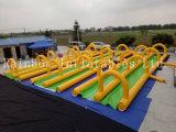 Diapositiva de agua gigante inflable popular del nuevo diseño 2016 con la diapositiva y la piscina (RB6081) del chapoteo