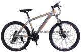 디스크 브레이크를 가진 26inch 강철 프레임 산악 자전거