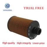 Auto Filter Van uitstekende kwaliteit van de Olie van de Levering van de Fabrikant van de Filter 6711840125 6711803009 voor KIA
