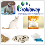 Sichere und wirkungsvolle kleine HundProbiotics Nährstoff-Enzyme plus intestinales