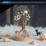 Stolp van het Glas van de Glazen kap van het Glas van de Verkoop van de fabriek de Directe