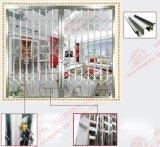 Acciaio inossidabile di alta qualità che fa scorrere il portello della griglia (BHS-DA02)