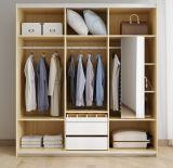 Nuova mobilia del salone di modo 2018 del guardaroba (WD-1257)