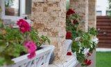 실내와 외부 벽 훈장 물자 인공적인 문화에 의하여 드러내는 벽 돌
