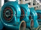 Генератор MW/Hydrtoturbine генератора турбины 2.5~6 Фрэнсис гидро (вода)