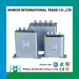 Série Bsmj Shunt de condensateur de puissance basse tension