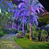 De waterdichte Openlucht RGB Statische Projector van de Laser van de Glimworm, het Licht van de Laser van Kerstmis