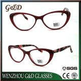 Populärer Produkt-Großverkauf-Aktien-Azetat Eyewear Brille-optische Glas-Rahmen