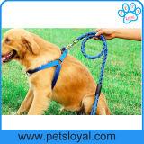 Amazon de suministro de productos estándar de PET PET Arnés de Nylon Correa del perro