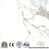 600X600 Building Material Ceramic Tiles Polished Porcelain Glazed Floor Tile (IV6301)