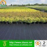Tela de ervas daninhas PP com resistência UV
