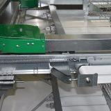 Type de 4 rangées H cage automatique de couche de poulet de Henan