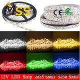 14,4W5050 SMD Fita LED impermeável/ Flexível tira RGB LED Light