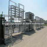 Panneaux soudés de fil de porc de panneaux de bétail de panneau de treillis métallique (kdl-128)