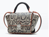 Long Strap (ZX20397)の新しいArrival Fashion Beauty Ladies Handbag