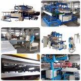 Máquina de fabricación de placas disponible de los alimentos de preparación rápida de la espuma del picosegundo