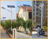 Cc12V IP65 Resistente al agua integrado en una sola calle la luz solar