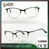 Spettacolo del telaio dell'ottica degli occhiali di Eyewear del metallo di modo del nuovo prodotto