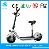 Motorino elettrico, bici elettrica con la Li-Batteria