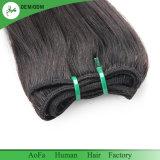 На заводе волос Aofa питания высокого качества 100% нового волос