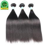 Высокое качество по Виргинским волосы Weft Малайзии
