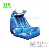 子供の大人のゲームプールが付いている膨脹可能な水スライド