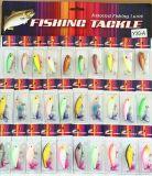 30PCS Assorted l'insieme combinato dell'attrezzatura di pesca dei ciprinidi di richiamo di pesca