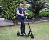 中国は電気スクーターの価格を立てる