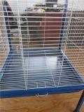 Neuer konzipierter Vogel-Rahmen-Papageien-Rahmen für bedienungsfreundlicheres