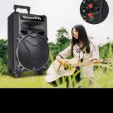 Navulbare Professionele Nieuwe Bluetooth Radio 8 spreker ''