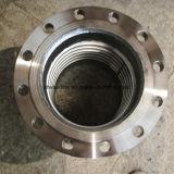 Série 300 bride du tuyau en acier inoxydable