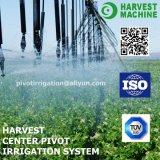 Sistema de irrigación de centro de riego remolcable linear del pivote de la maquinaria para la venta