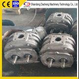 Ventilatore delle radici della pompa di aria Dsr250 per il prezzo poco costoso di fabbricazione del bruciatore
