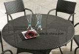 Mobilia esterna poco costosa del giardino di grande quantità di caricamento che pranza insieme con la presidenza & la Tabella (YT238)