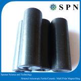 亜鉄酸塩の永久マグネットモーターは異方性陶磁器の磁石を鳴らす
